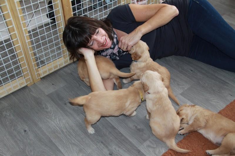 Prachtig, hoe 10 puppies ,de mensen languit op de grond krijgen !!